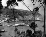 Panoramic view of Avalon Bay, Catalina Casino, and S.S. Catalina