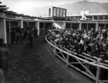 Anxious anticipation at the Santa Anita Racetrack