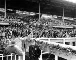 Crowds at Santa Anita Racetrack, view 2