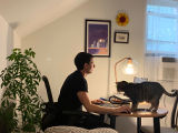 Man working in a home office accompanied by his cat