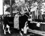 Priest blessing a garlanded cow