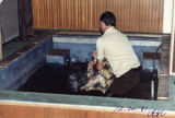 Shew S. Leong being baptized at the Chinese Assembly in Lincoln Heights Los Angeles