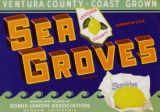 Sea Groves