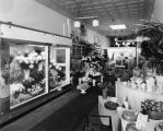 Drew's Flower Shop, Wilmington