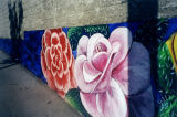 Two large flowers, a mural