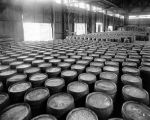 Barrels of liquor in a warehouse