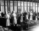 Tuna cannery workers