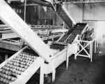 West Covina fruit processing plant