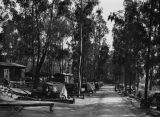 View of L.A. municipal auto camp, Elysian Park