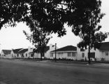 Street of small L.A. homes