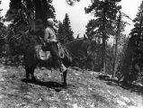 Horseback at Big Pines