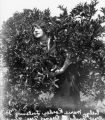 Woman posing with orange tree, view 1