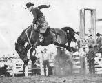 "Rodeo rider ""Smoky"" Snyder"