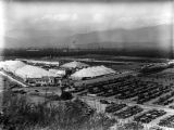 Los Angeles County Fair of 1929, view 8