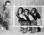 Craig's Chimpanzees