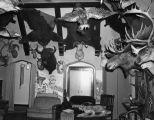 House with taxidermy specimens