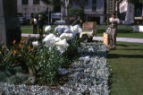 Easter lilies, Pershing Square