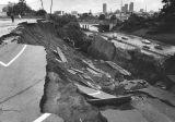 Mud above the Hollywood freeway