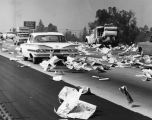 Freeway awash in sea of newspapers