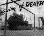 Swing of death, Vine Street Elementary School