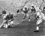 Rookie Ram quarterback, Ron Miller (9), fumbles ball away in final quarter