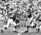 Quarterback Roman Gabriel throws a pass in peaceful surroundings Sunday