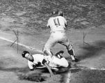 Phillies' Clay Dalrymple blocks Dodgers' Maury Wills at home in yesterday's action