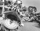 Lion Dance, Tet New Year