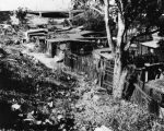 Rear view of slum housing, Fickett Hollow