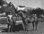 Statue of Seabiscuit