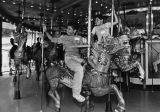 Ride on a merry-go-round