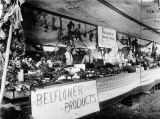 Agricultural exhibit, Bellflower