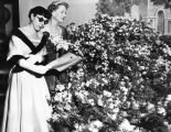 Edith Head at flower show