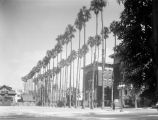 West Adams Boulevard and Palm Drive