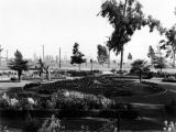 Long Beach park and oil derricks