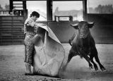 Just another day at the bullfights -- in Pico Rivera