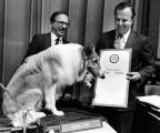 Supervisors honor Lassie