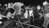 Fans rushing at the Clash concert