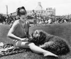 Dog combing at Santa Monica beach