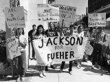Anti-Jackson demonstrators