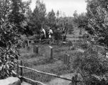 Tom Sawyer's Island cemetery
