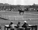 Olympic equestrian games