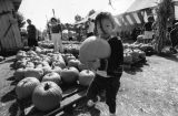 Pumpkin season at Tapia Brothers Farm Stand, Encino