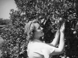 Ethel in orange grove