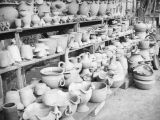 Shelves of pottery at La Bonita Factory