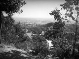 View of Hollywood from Outpost Estates