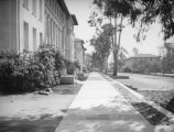 Sidewalk by Fowler Hall at Occidental College