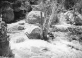 Tahquitz Canyon stream