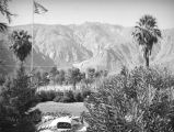 El Mirador Hotel grounds, Palm Springs