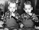 First haircut's 'scarey [sic] stuff' to 17-month-old Heerdt twins but all ends well
